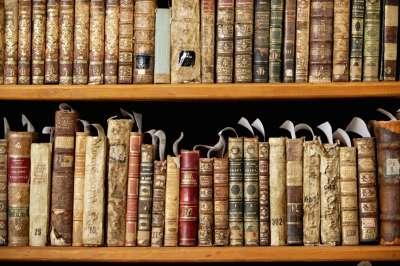antique_library_shelf
